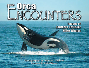 50% off-Gently used-ORCA ENCOUNTERS photography by Monika Wieland