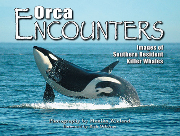 Gently used-ORCA ENCOUNTERS photography by Monika Wieland