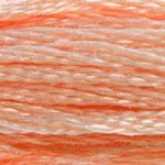 peach embroidery floss