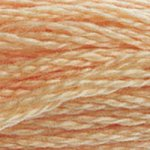 soft peach embroidery floss