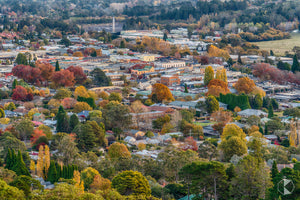 Bowral Township, Southern Highlands