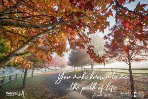 Word + Image: Psalm 16:11 - Autumn Mist (WI010R)