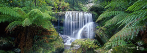 Bridal Veil Falls, Blue Mountains (BD001P)