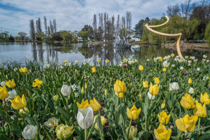Commonwealth Park, ACT