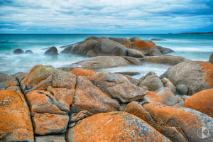 Disappointment Bay, King Island (KI522R)