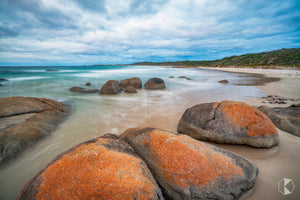 Disappointment Bay, King Island (KI537R)