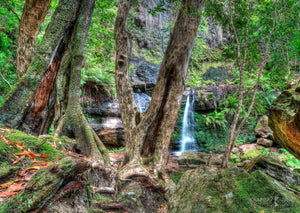 Fairy Bower Falls, Morton National Park, Southern Highlands (AD079R)