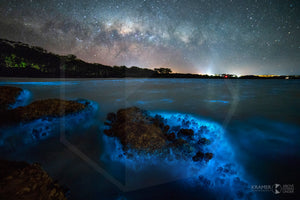 Green Patch Bioluminescence, Shoalhaven