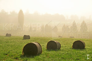 Misty Haystacks, Southern Highlands, NSW (AB026R)