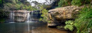 Nellies Glen, Southern Highlands, NSW (AB071WP)