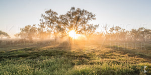 Morning Rays VI, Balranald (BJ019P)
