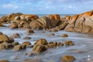 Sandblow Point, King Island (KI580R)