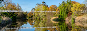 Suspension Bridge, Queanbeyan (AQ011P)
