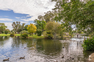 Township, Deniliquin (BJ051R)
