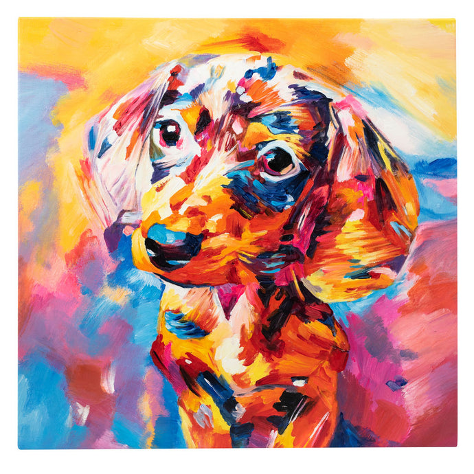 Dazzling Dachshund. 100% Hand Painted Oil on Canvas. 60x60cm. Framed