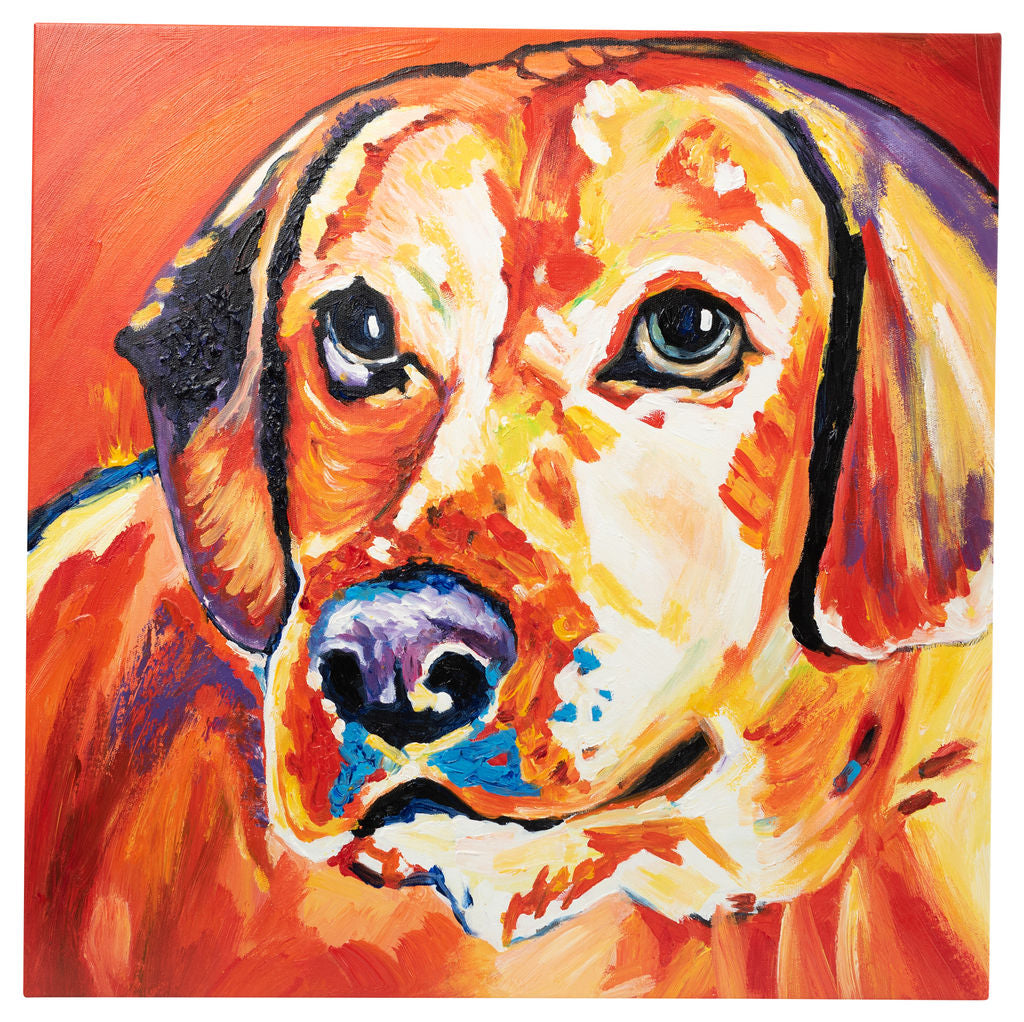 Beautiful Vibrant Labrador. Hand Painted Oil on Canvas. 60x60cm. Framed