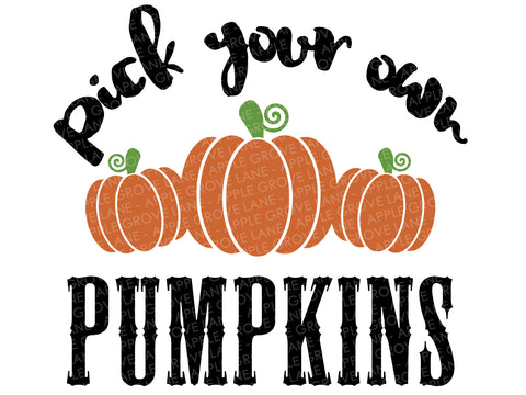 Pick Pumpkins Svg - Fall Svg - Thanksgiving Svg - Autumn Svg - Pumpkin Patch Svg - Pick your own Pumpkins Svg - Svg Eps Dxf Png