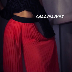 Sheer palazzo pant Sheer pleats CALLIELIVES