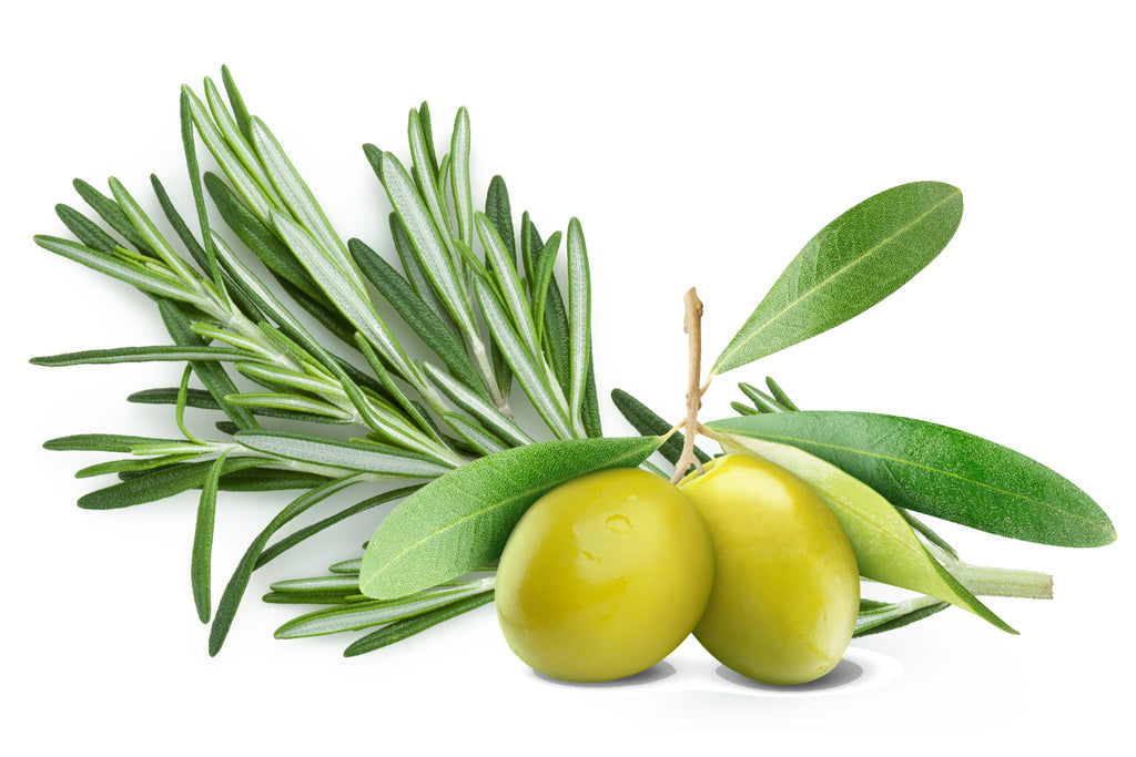 Extra Virgin Olive Oil with Rosemary