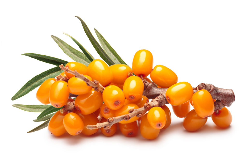 Sea Buckthorn Vodka 18%