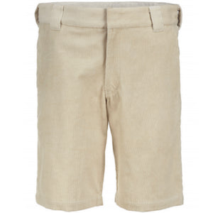 Dickies Fabius cord short oyster grey