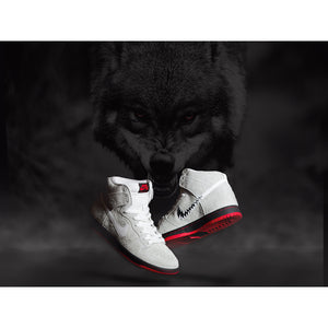 Nike SB x Black Sheep Dunk High TRD QS summit white/summit white-black