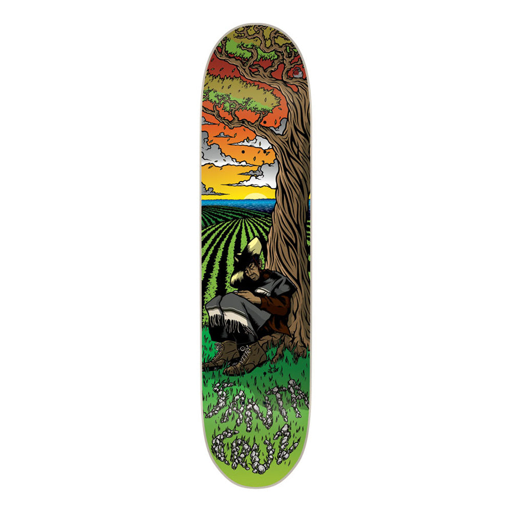 Santa Cruz Guzman Siesta Powerply deck