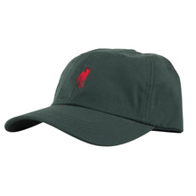 Load image into Gallery viewer, Welcome Rocking Dog Slider green/maroon cap