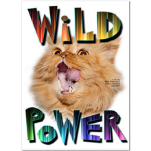 Load image into Gallery viewer, Wild Power DVD
