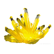 "Load image into Gallery viewer, Space Age Crystals® - Item 681: Grow ""Citrine"""