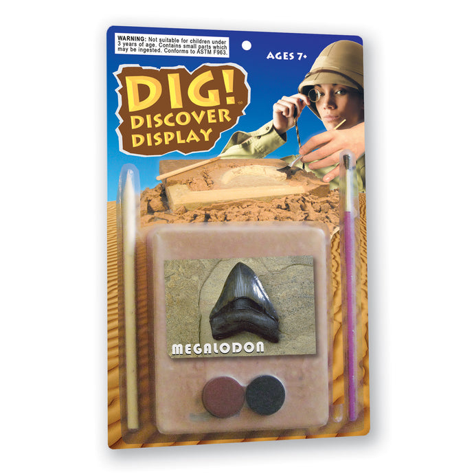 DIG! & DISCOVER™: Blister Kit: Megalodon Shark Tooth