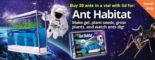 Space Age™ Ants -