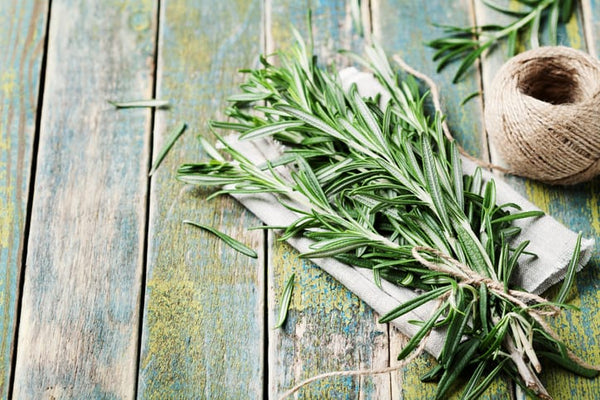rosemary has powerful antioxidant and anti-stress benefits