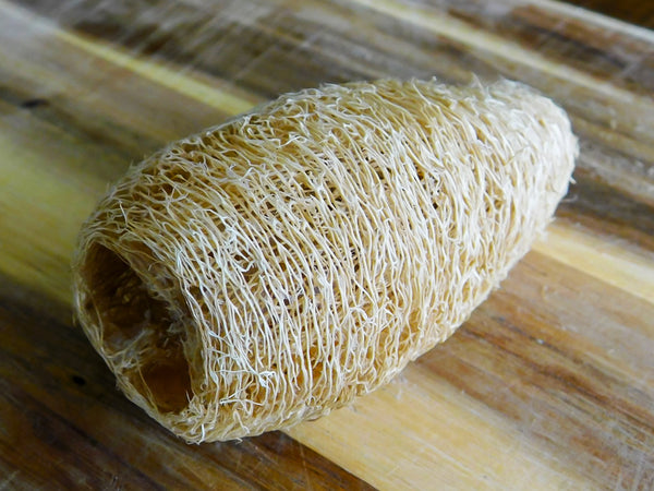 Raw Egyptian Luffa