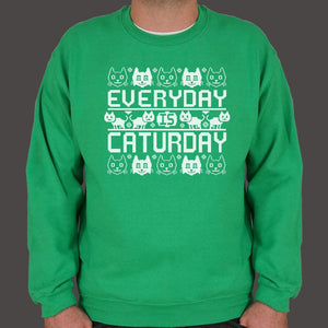 Every Day Is Caturday Sweater (Mens) - catchup-apperal