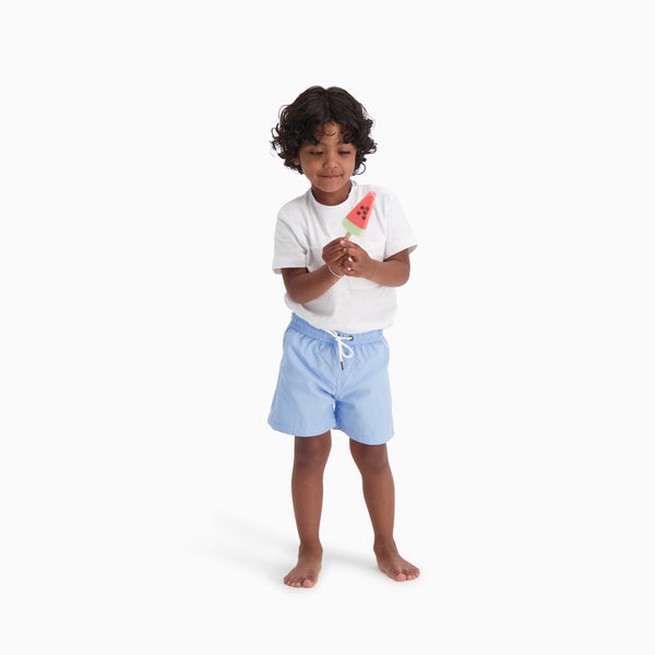 The Boys Swim Trunks | Lavender Light Blue