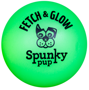 Spunky Fetch & Glow Ball Dog Toy
