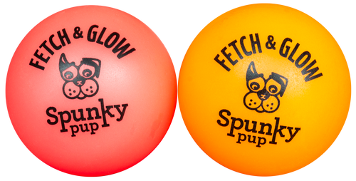 Spunky Fetch & Glow Small 2 pack Dog Toy