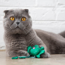 Load image into Gallery viewer, Petstages Toss N Dangle Frog Cat Toy
