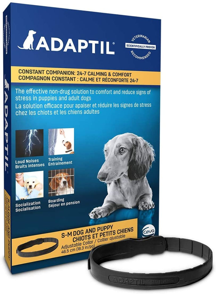 Adaptil Calming Collar Small/Medium for Dogs
