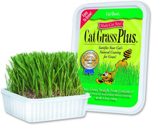 Load image into Gallery viewer, Cat A'Bout Cat Grass Plus Growing Kit 150g