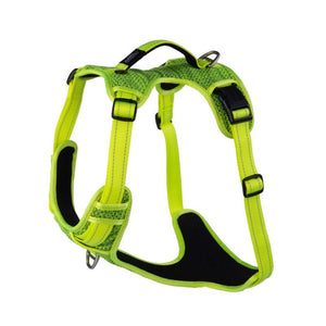 Rogz Explore Padded Dog Harness DayGlo