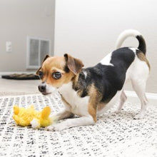 Load image into Gallery viewer, Kong Dr. Noyz Duck Extra Small Dog Toy