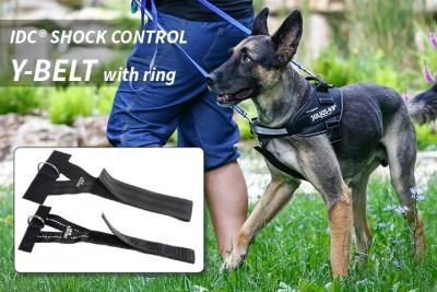 Julius K9 Front Control Y Belt With Front Ring Dog Harness Attachment