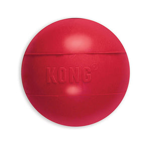 Kong Ball Dog Toy