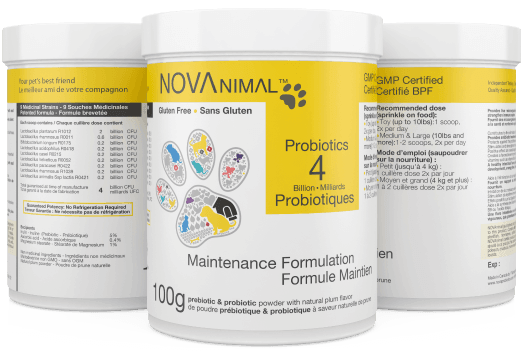 NOVAnimal Probiotics 100g Maintenance