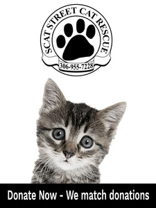 Pet Food Drive 1lb Donation - Street Cat Rescue