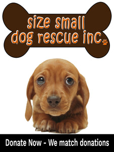 Pet Food Drive 1lb Donation - Size Small Dog Rescue