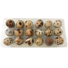 Load image into Gallery viewer, Big Country Raw Quail Eggs (Frozen) - 18 pk