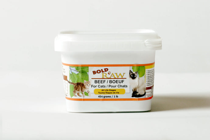Bold Raw 454g Beef Raw Cat Food